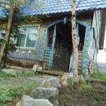 ダーチャ(別荘)