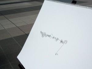 P5040039 のコピー