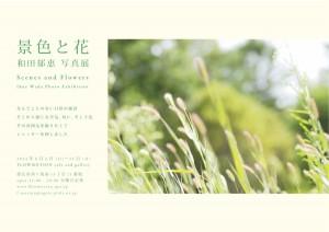 広告和田 のコピー